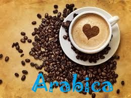 ARABICA POWDER FLAVOR