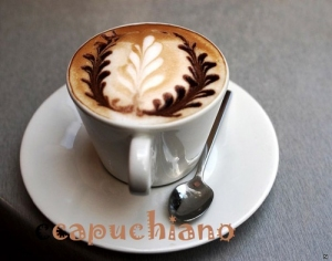 CAPUCHINO POWDER FLAVOR